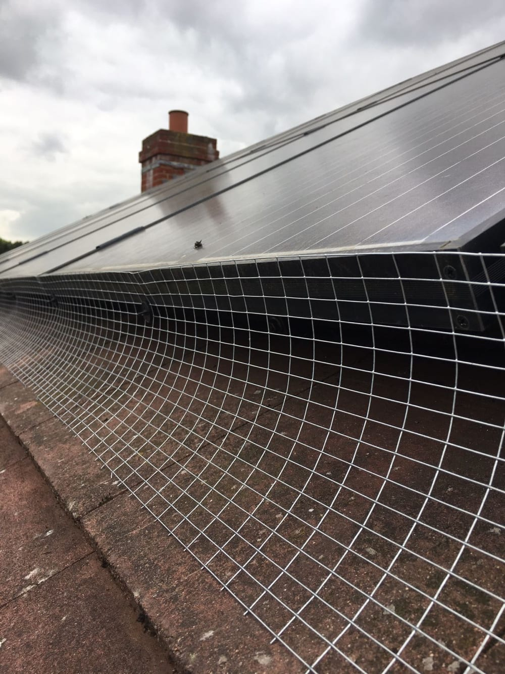 Solar Panel Bird Proofing In Kent 1st Stop Pest Control